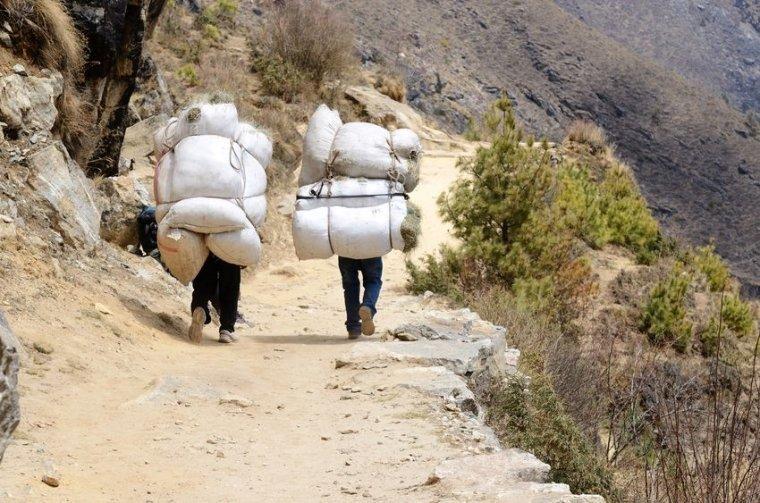 hombres llevando una carga