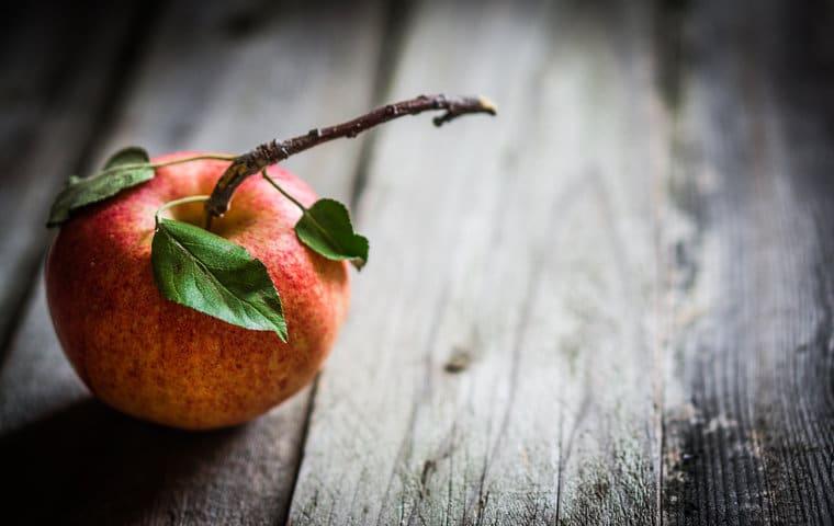 arbol con fruto - fruto - manzana